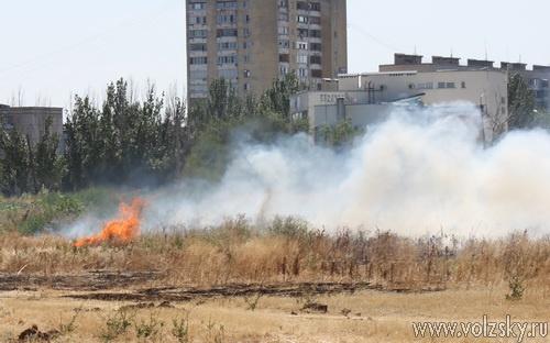В Волжском чуть не сгорел весь парк