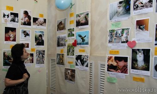 В Волжском открылась фотовыставка «Соседи по планете»