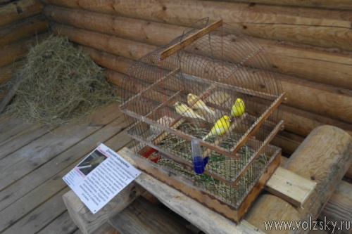 В Волжском открылся мини-зоопарк