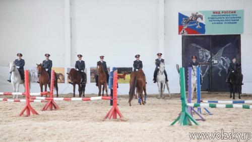 В Волжском открыт конно-спортивный клуб «Кентавр»