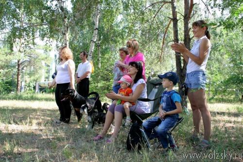 В Волжском выбрали самую умную собаку