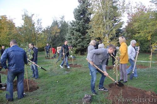 200 новых деревьев посадили депутаты и чиновники