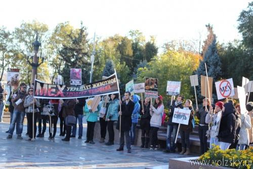 В Волгограде состоялся антимеховой марш