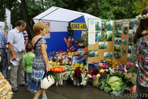 В Волжском прошёл Фестиваль цветов и ландшафта-2013