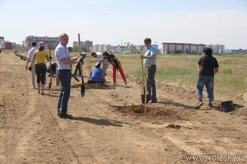 Гости из Осетии озеленили Волжский