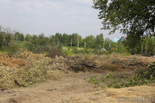 Кто валит деревья на плотине?