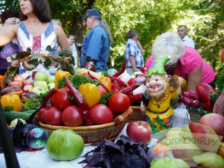 В День садовода в Волжском прошла широкая ярмарка