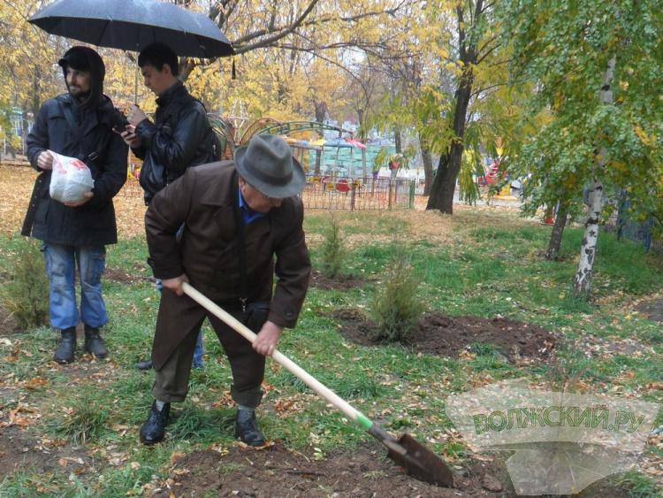 В парке Волжского высадили 180 деревьев