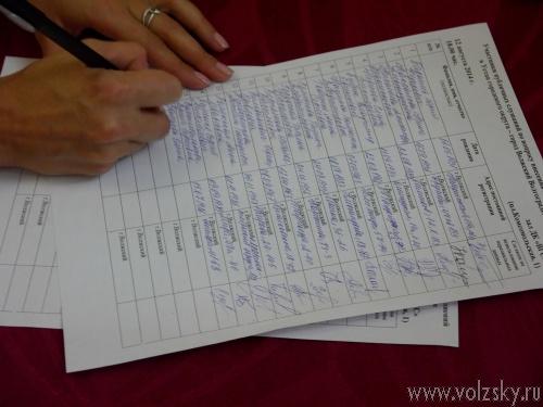 Волжане «большинством» голосов одобрили внесение изменений в городской Устав