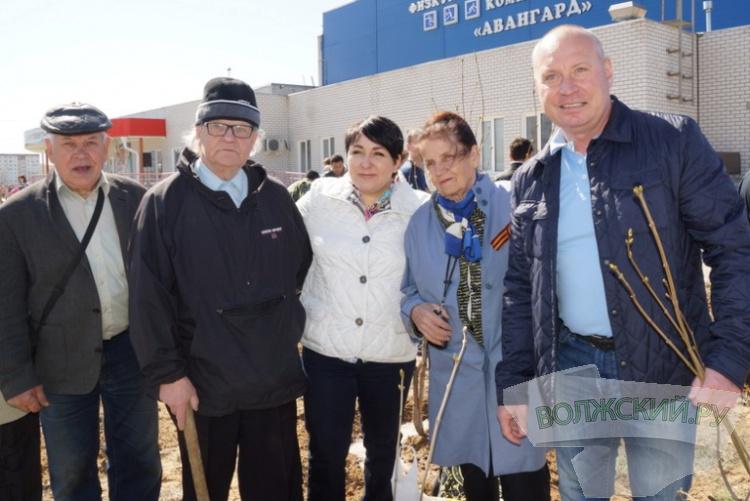 В Волжском стартовал социальный проект «Сирень Победы»