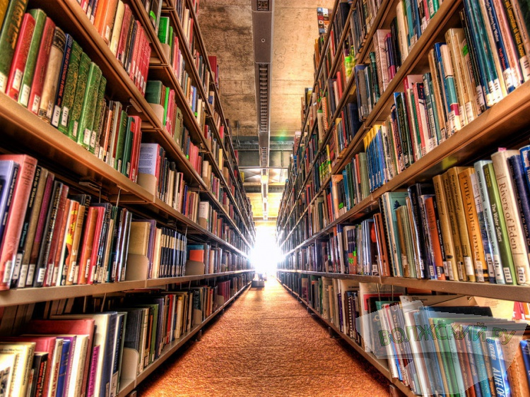 Нужны ли Волжскому библиотеки?