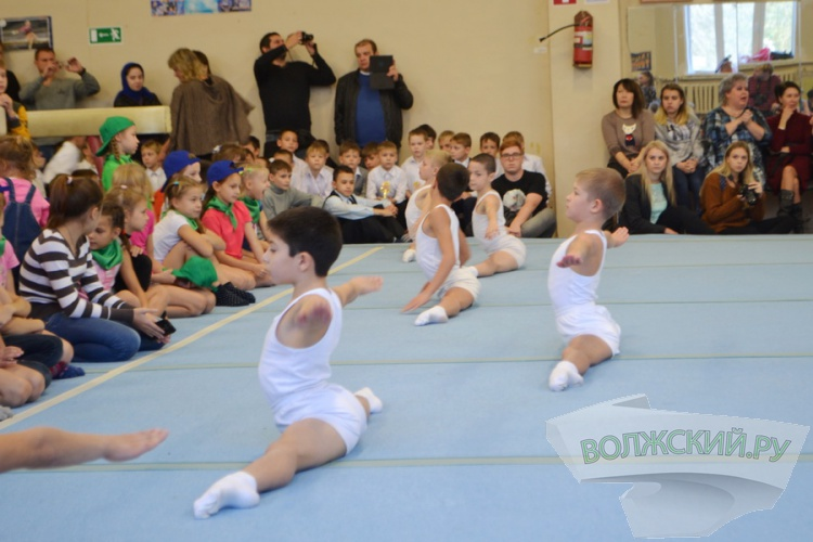 В Волжском прошел большой праздник гимнастики