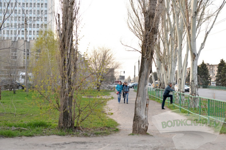 Велодорожки на площади Ленина обсудили «в узком кругу»