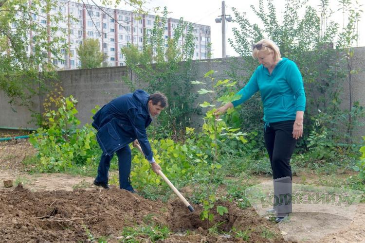 «Водоканал» озеленяет территорию в новой части города