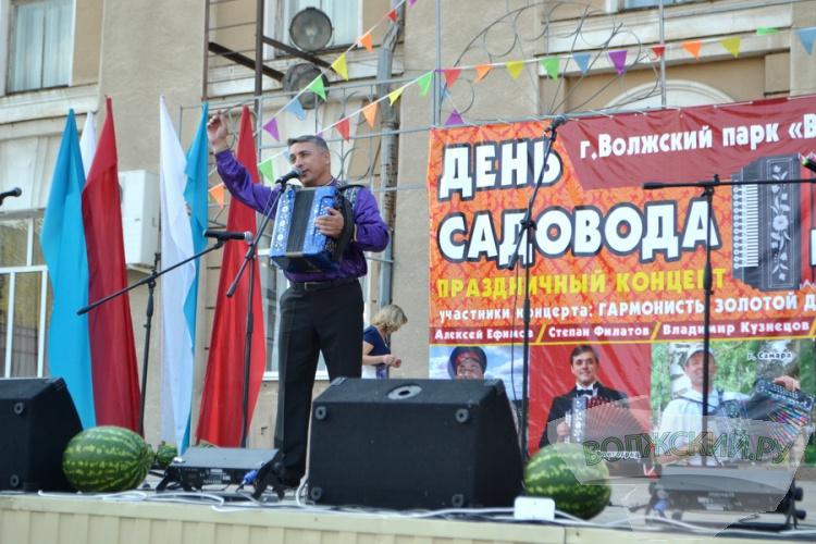 Волжане отметили День садовода народными гуляньями