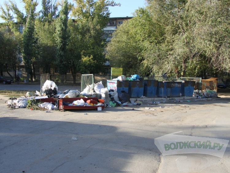 Волжане решили сами бороться с некультурными «мусорщиками»