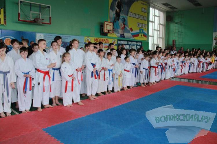 Волжские каратисты завоевали пять золотых медалей