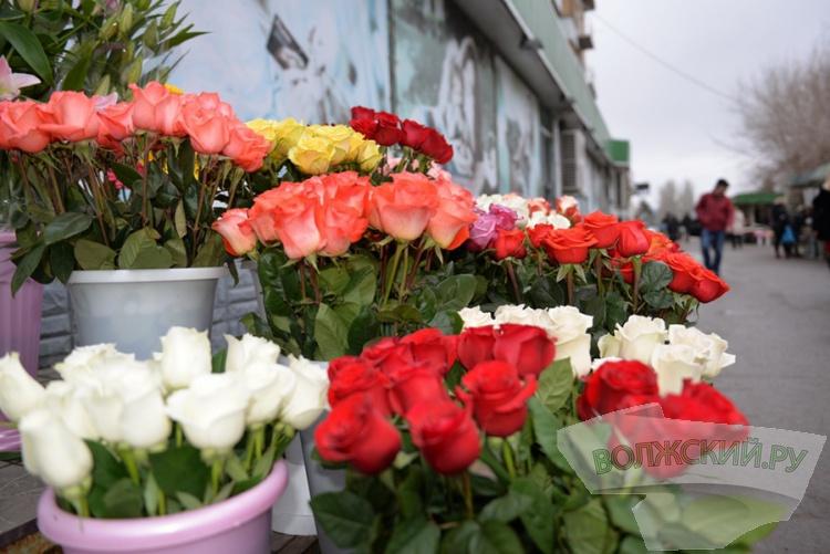Волжский охватил «цветочный» ажиотаж