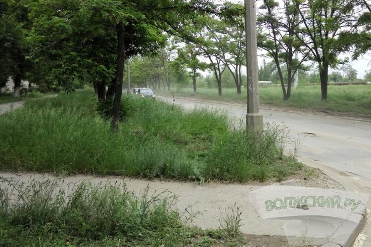 Волжский утопает в траве после наводнения