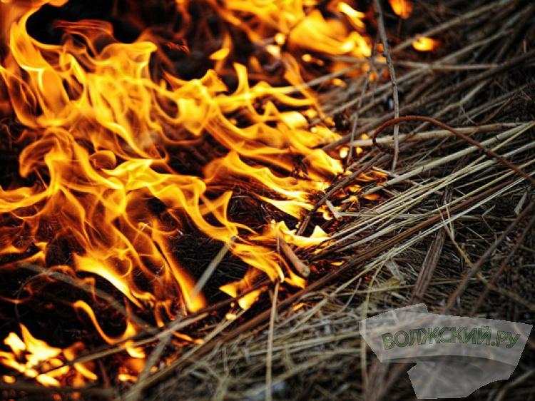 ВВолгоградской области с19сентября официально сняли противопожарный режим