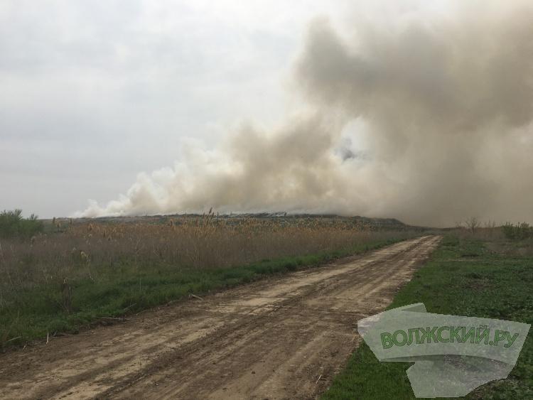 ООО «Волга-Бизнес»: «Предположительно, возгорание возникло путем умышленного поджога»