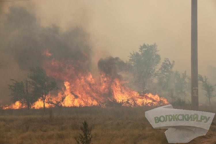 Пожар около ЗОСа уничтожает санитарно-защитные насаждения