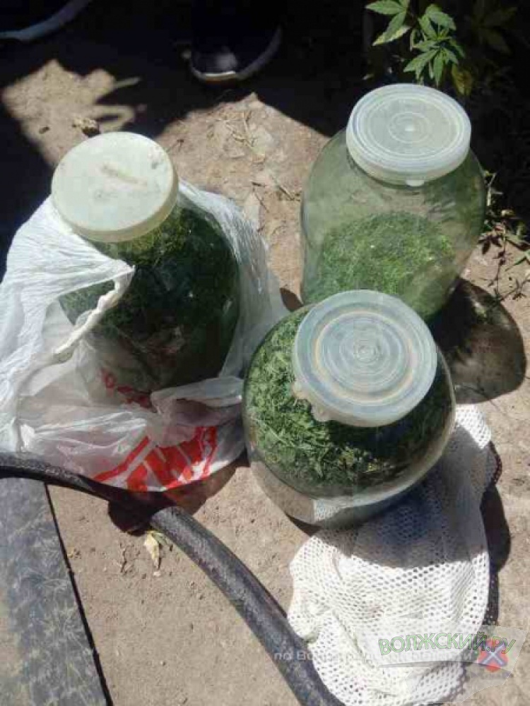 В регионе за месяц изъяли 28 кг наркотиков
