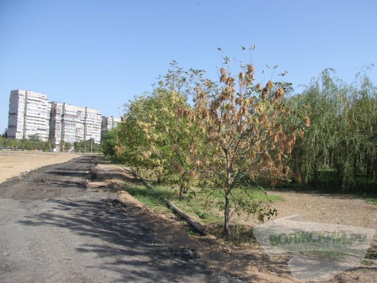 В Волжском появится парк «Новый город»