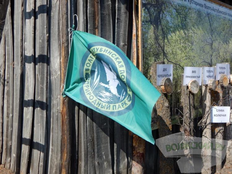 Волжская ГЭС и экологи проводят полевую школу для лесничеств региона