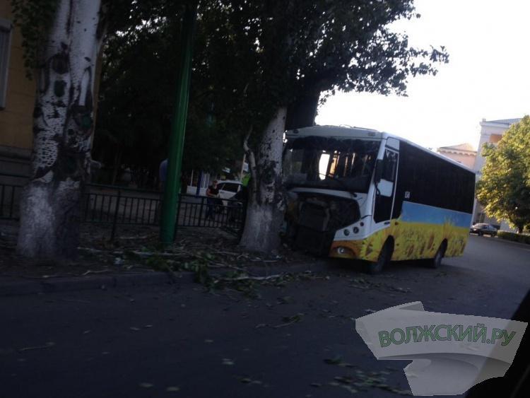 В Волжском автобус влетел в дерево