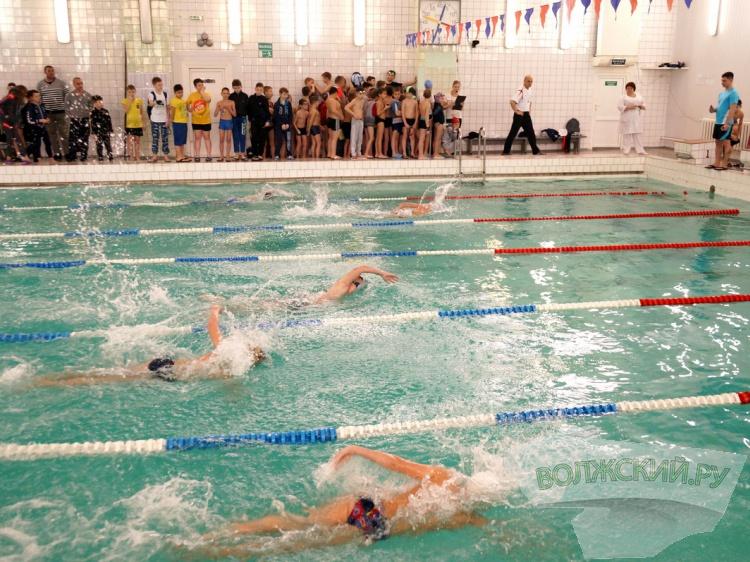 Волжские пловцы успешно выступили на региональном первенстве